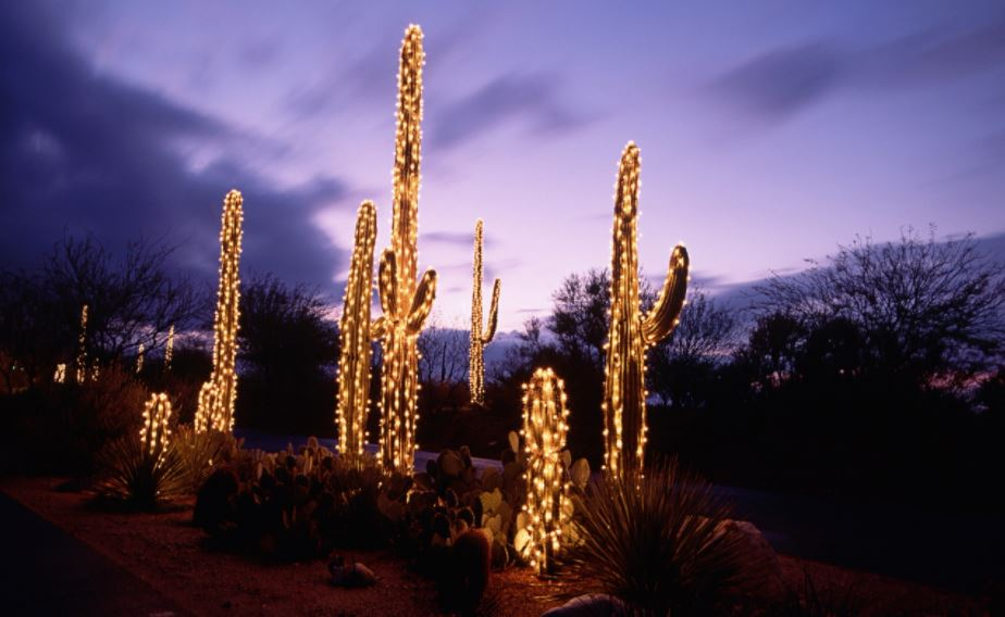 christmas light displays in arizona